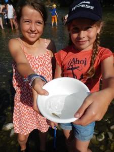 Ein kleiner Fisch bei einer biologischen Gewässeruntersuchung