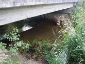Angeln an Brücken - Toller Hot Spot