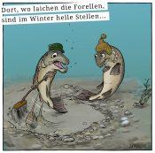 """Bavarian Basics - """"Dort, wo laichen die Forellen, ..."""""""